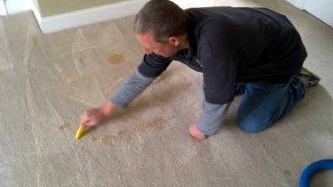 Jared scrubbing carpet