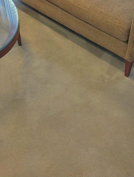 Carpet Spot Removal Wilmington NC