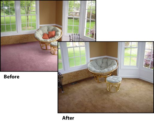 Carpet Dying & Color Correction Wilmington, NC